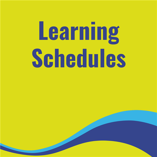 Learning Schedules