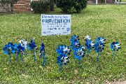 Blue pinwheels in front of school